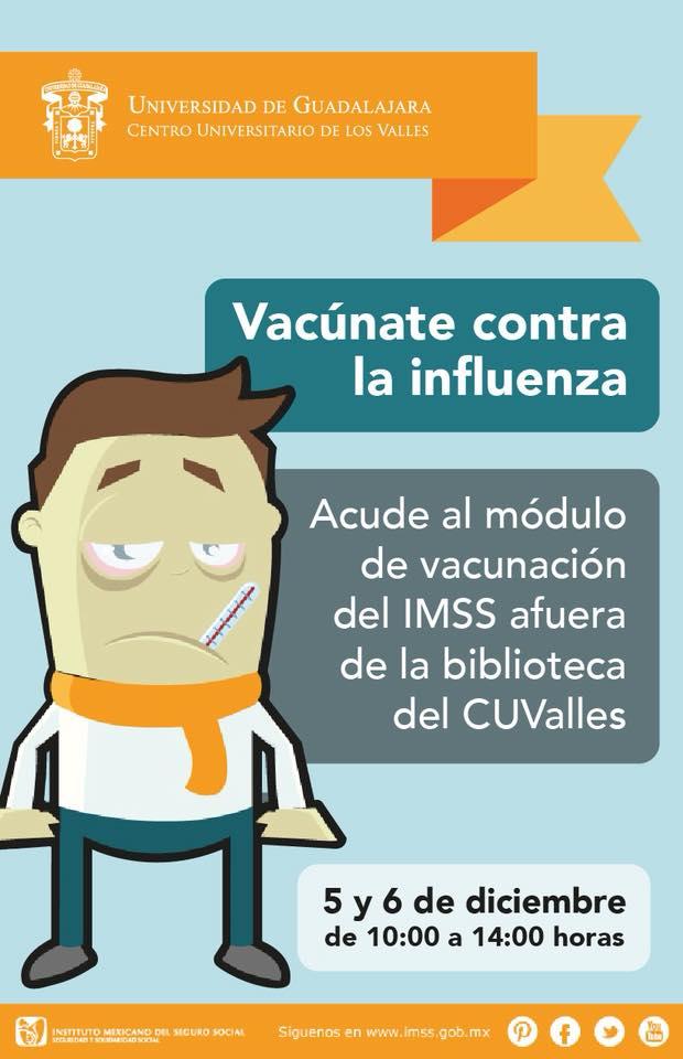 Cartel Influeza 2017
