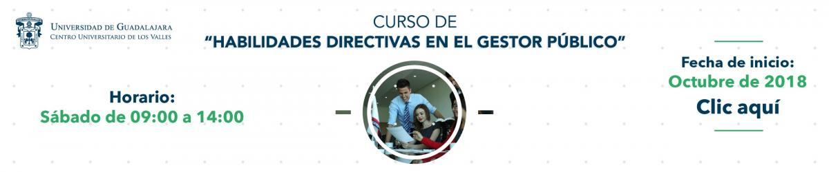 Banner Curso de Habilidades Directivas en el Gestor Público