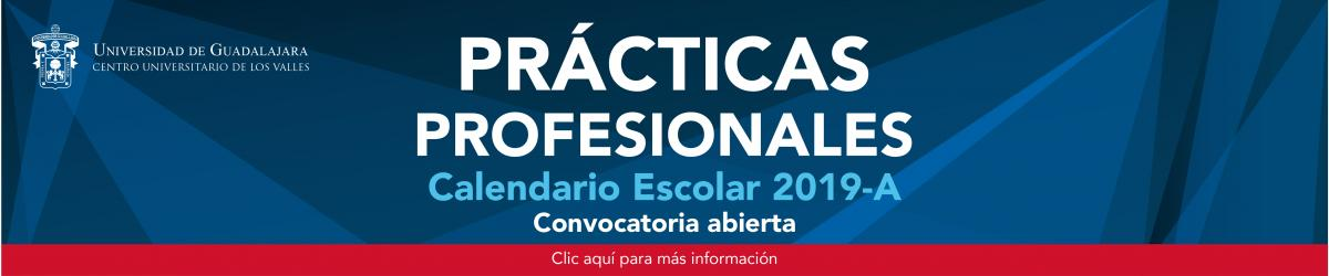 Convocatoria Prácticas Profesionales 19A