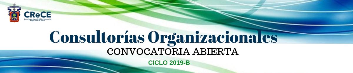 Consultorías Organizaciones 2019-B